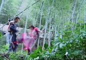 《仙剑奇侠传三》拍摄花絮,杨幂总是欺负胡歌,狠狠的踹他一脚