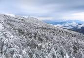云南冬天的特色是什么?