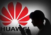 加媒:加拿大如果将华为排除在本国5G网络建设之外,可能因违约被起诉