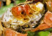 中国台湾检出40吨大闸蟹一级致癌物二噁英含量超标产地湖南、浙江