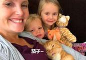 女子不顾家人反对收养流浪猫,如今已生下三个女儿,猫咪暖心照顾