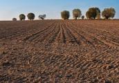 农民朋友注意了村集体的决定也不可以侵害公民的权利