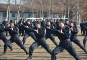 丹东公安凤城巡特警大队连续侦破5起涉嫌销售假药案