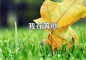 余秋雨:我在等你(美文)
