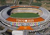 2020年东京奥运会形象大使出炉,卡卡罗特上榜,网友:不可思
