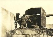 淞沪会战有多惨烈:六万桂军赶到上海,三天时间全军覆没