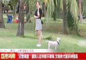 记者调查:遛狗人近半数不牵绳,文明养犬意识有待提高