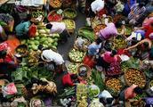 只有在菜市场,我才愿意跟生活和解