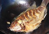 郫县豆瓣酱炖鱼怎么做