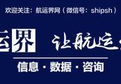 """泛亚电商""""零首付""""产品——箱信宝上线倒计时丨航运界"""