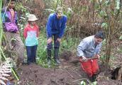 农夫在野外地面拼命挖掘让人好奇,结果发现稀有犰狳