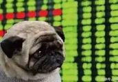 """8.7万股民""""踩雷"""":复牌遭4000万股封跌停 董事长辞职不干了"""