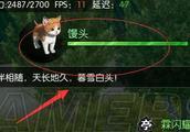 逆水寒怎么获得宠物小猫 逗猫奇遇玩法攻略