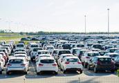 如今二手车市场为啥基本都是没开多久的新车?老板开口说出了实情