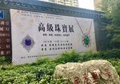 宝祥艺术品金融中心 300多件国际认证珠宝正在展出