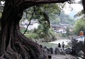 中国最值得外国人去的地方之一黄姚古镇!湛江团贺州3天游第四景