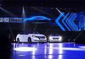 2018销量排行前五,五菱宏光不是第一,卡罗拉垫底,两国产车上榜