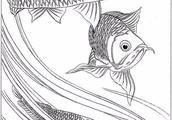 这是画鱼最精美的白描线稿!年年有余!