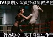 《兄弟》惹争议 TVB小花将猪尸当沙包狂打 网民斥恶心
