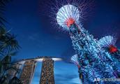 新加坡交易所和金融管理局已成功测试区块链在资产清算中的应用
