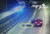 太危险!两情侣高速吵架 女子横卧车道中