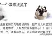 陈羽凡吸毒,经纪公司声明成史上最快打脸声明 毒品,让最美凋零