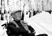 周百义:诗人白桦,他是20世纪下半叶作家的孤独代表