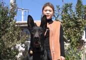 巨黑怪镇宅辟邪之黑狼犬