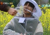 王源去菜地打药被蜜蜂蛰后,谁注意贾乃亮对他做了什么?太暖心了
