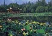 杭州西湖的十处美景,各个文化底蕴深厚,你的机票买好了吗?