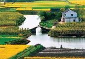小众旅游文化:瑞安桐浦村,浙江枸杞岛,大王沙滩,小西天