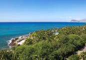 夏威夷四季又要被拉黑,为何不断塞小费服务才能被升级?