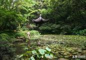 杭州最值得去的一个景区,皇帝赐名,拥有西湖双绝!