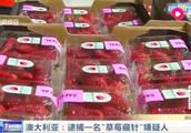 """澳大利亚""""草莓藏针""""事件最新进展!逮捕一名50岁女嫌疑人"""