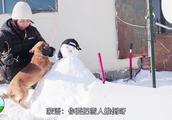 草原印象:牧区大雪有多厚!乌音嘎雪人堆得欢,狗狗捣乱还挺忙!