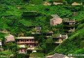"""浙江一村落人去楼空,""""无人村""""被绿色植物包裹着,美得让人窒息"""