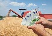 如何激活农村金融服务链?这篇文章给说透了
