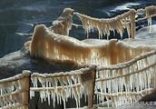 又到一年黄河壶口瀑布冰挂最美欣赏季 冰凌像一群小狮子