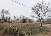 Qnews|甘肃女童受伤害事件丢口红老师首度发声:事发时不在现场,舅舅非教育局长