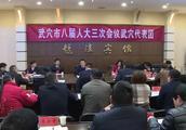 市长李新桥参加人大田镇