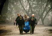 美国加州大火有多严重?又有新起火点,40多人死亡,200多人失踪