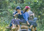 尼泊尔奇特旺国家森林公园,骑行穿行有275只亚洲虎的野生动物园