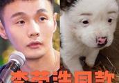 有网友在某闲置平台卖李荣浩同款狗狗  李荣浩:为什么这么便宜