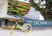 在新加坡共享单车违规停放是会被扣押的