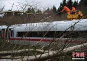 """德国铁路""""晚点围巾""""拍出7550欧元高价"""