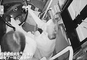 公交车乘客抢方向盘 六成与违规下车相关