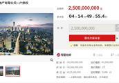 退市未有定论 中弘股份25亿债权遭东方资产淘宝拍卖