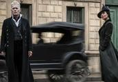 《神奇动物2》巴黎首映,个顶个端庄的主创里混进一只幺蛾子