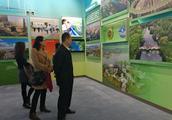 武汉作为闪耀改革开放40周年大型展览,汉正街光谷园博园等吸引观众驻足