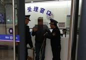 杭州犬类整治首日 主城区调查6起违规养犬